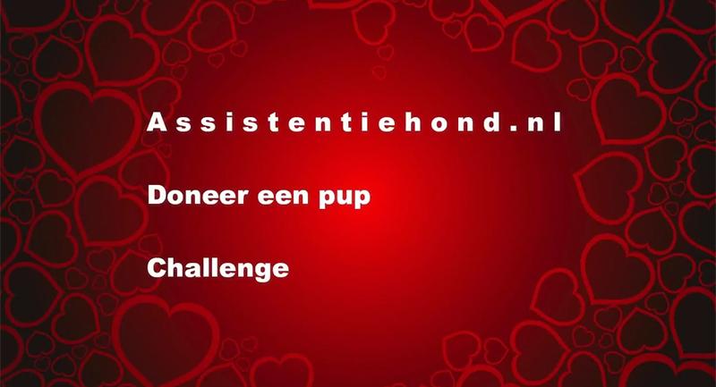 doneer-een-pup