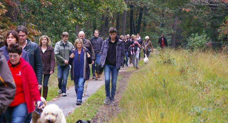 wandeling-oktober-5